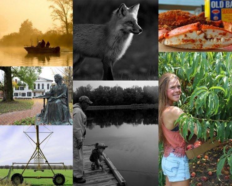 #VisitQAC Photo Contest
